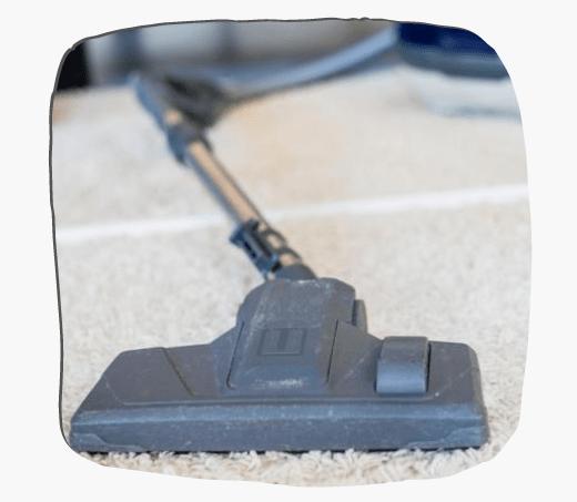 Rug Cleaning Paddington